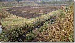 見えにくのですが、草が生い茂っている所と畑の間が相沢川